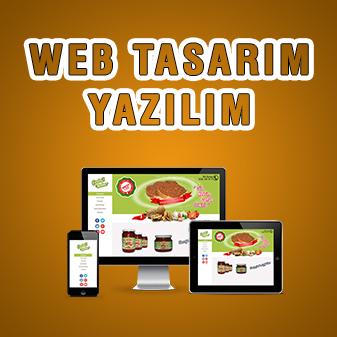 WEB TASARIM / YAZILIM